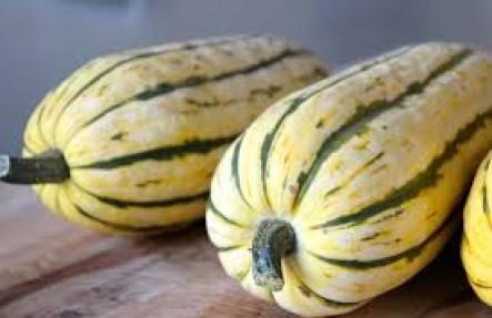 Organic Delicata Squash 5lbs