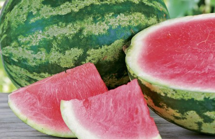 Organic Mini Watermelon 3-5lb