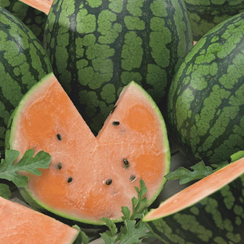 Organic Orange Watermelon 15lb