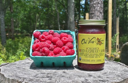 Red Raspberry Jam- 8oz