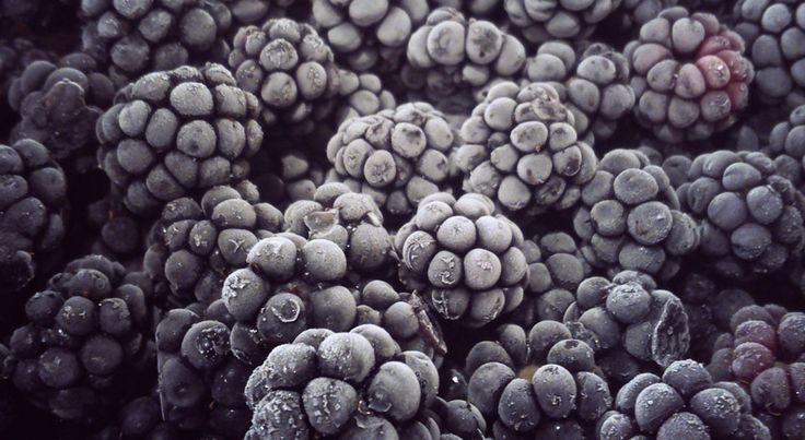 FROZEN Blackberries 1lb