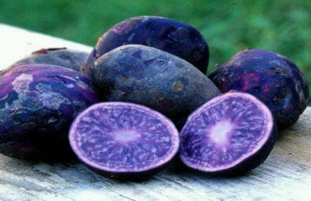 Blue Potatoes 3lb Bag