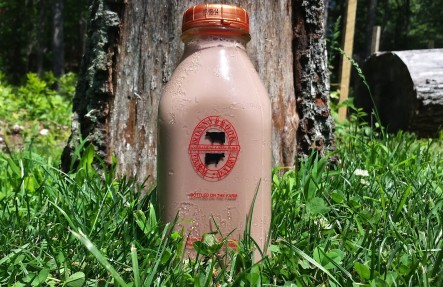 Ronnybrook Glass Bottled Chocolate Milk- 1 Quart