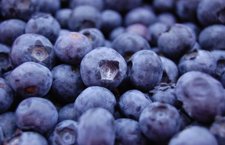 Blueberry Pint