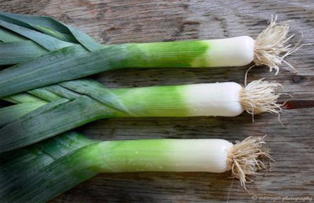 Organic Fresh Leeks Bunch