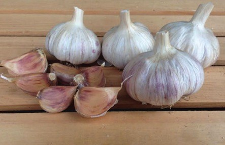 Organic Garlic Heads 1lb