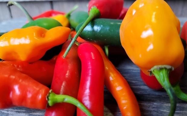 Organic Hot Pepper Mix