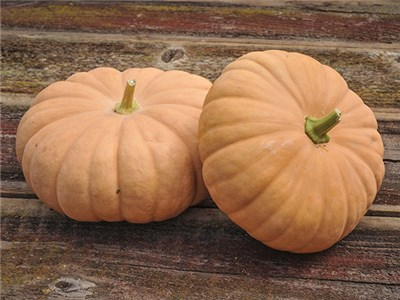 LI Cheese Pumpkins 7lb