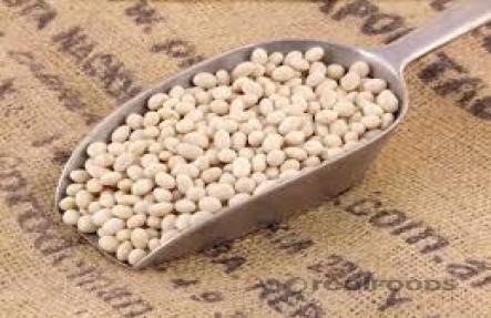 Navy Bean- 1lb