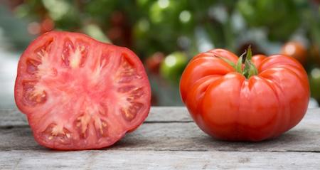 Organic Beefsteak Tomatoes 2lbs