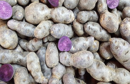 Organic Blue Fingerling Potatoes 2lbs