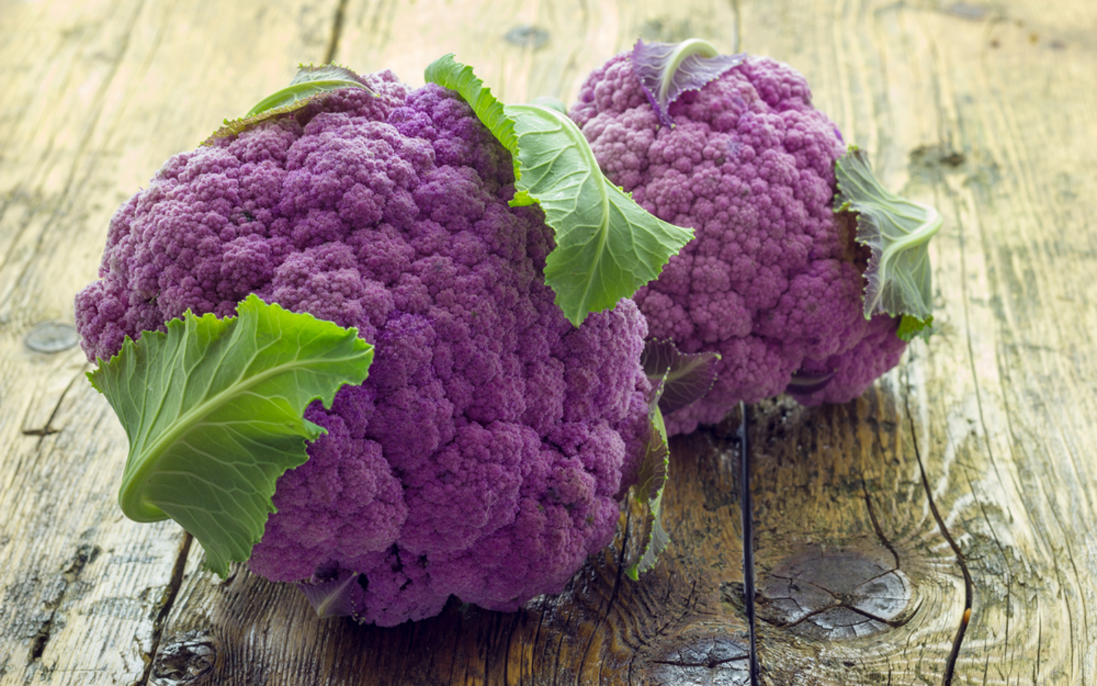 Organic Purple Cauliflower