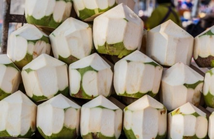 Organic Young Thai Coconut