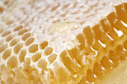 Honey Comb 4.5 inch Square