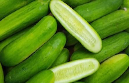 Organic Cucumbers 3lb Bag