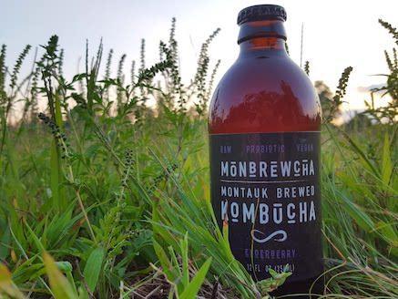 Elderberry, Organic Kombucha  12oz