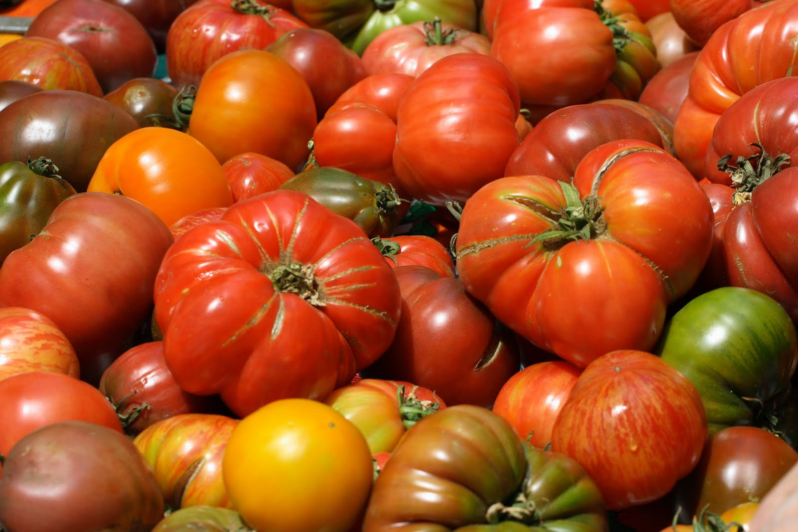 Organic Large Heirloom Tomatoes 3lb
