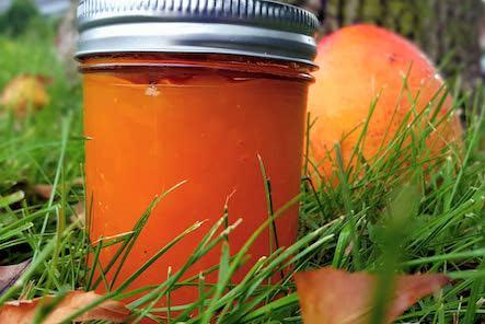 Organic Mango Jam/Puree