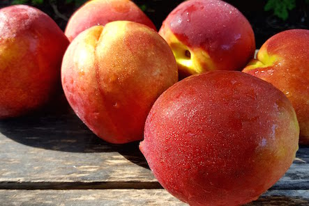 Organic Nectarines 3lb Bag