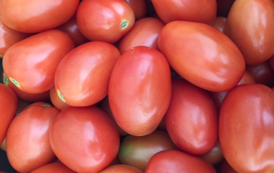 Organic Plum Tomatoes 3lb Bag