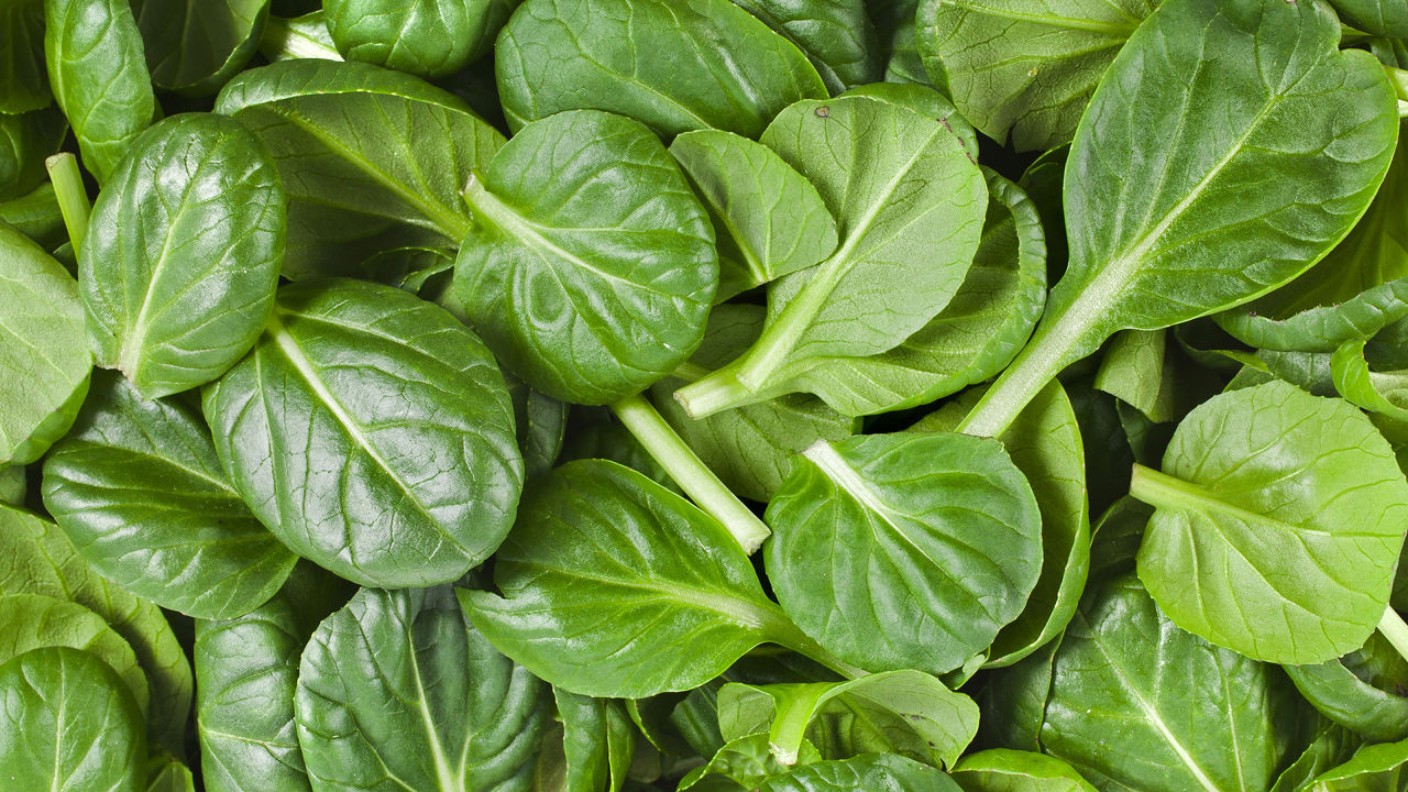 Baby Spinach-1lb Bag