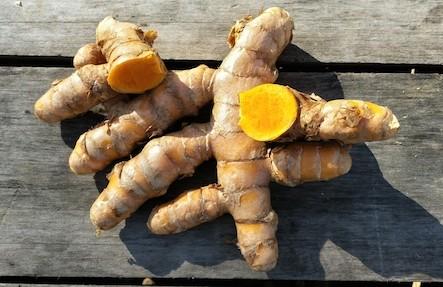 Organic Turmeric 1lb