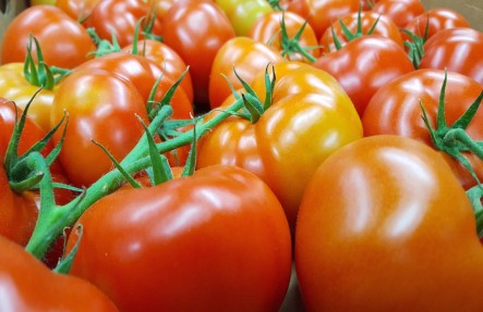 Vine Tomatoes 3lbs