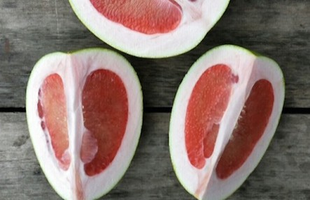 Organic Pomelo Grapefruit 2pack