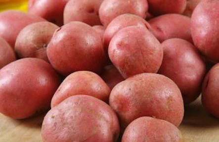 Adirondack Red Potatoes 3lb Bag