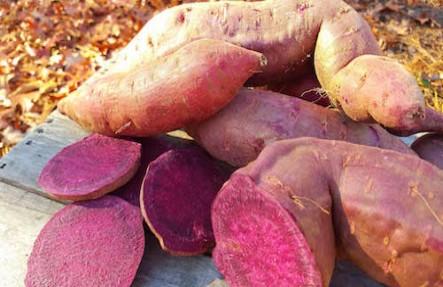 Organic Purple Sweet Potatoes 3lb Bag